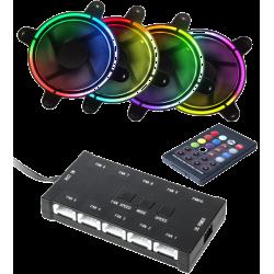 CTESPORTS 4 Fans Rainbows
